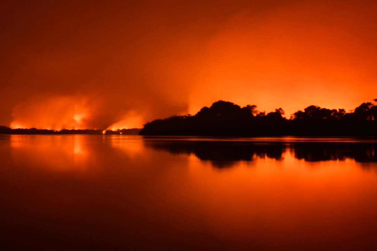 incendios_amolar_pantanal_foto_andrezumak-6